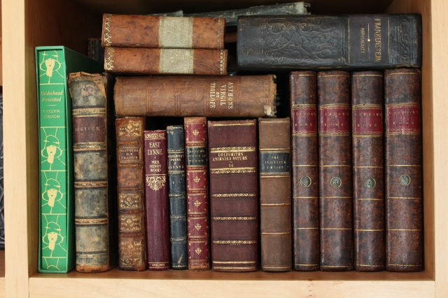 leather-books[1]